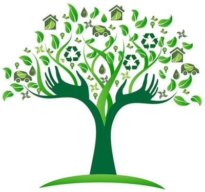 treeecology